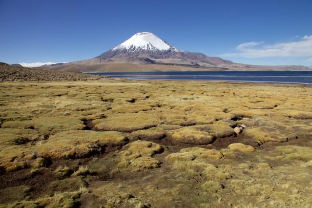Für die Reise -- Chile, Mirco Lomoth