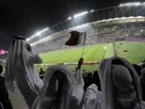 Fußball-WM in Katar - Fans im Stadion