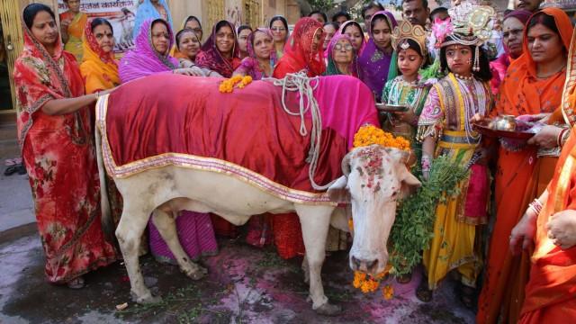 Indien Kuhhandel in Indien