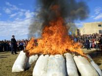 Cannabis-Verbrennung in Albanien