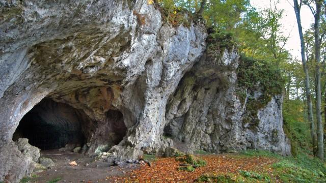 Liaison von Neandertalern und Zuwanderern