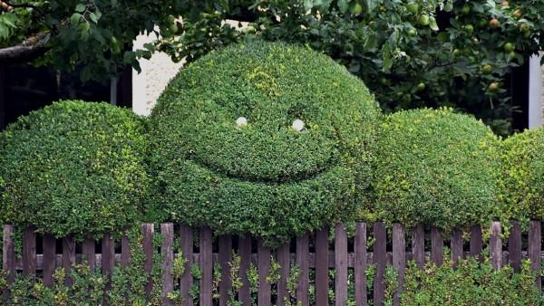 Smiley-Hecke