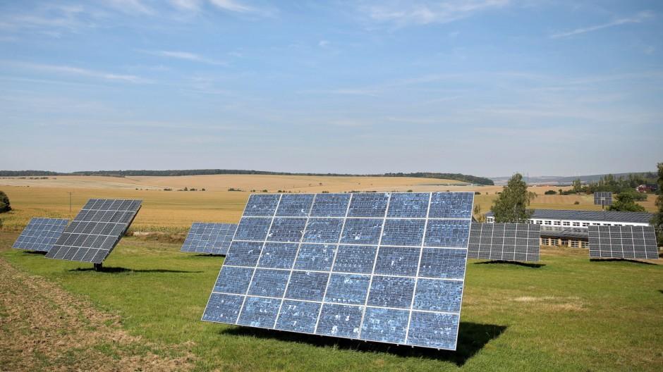 Agrofotovoltaik - Wenn Nutztiere unter dem Solardach grasen