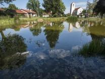 Straßlach, Dorfweiher mit Algen,