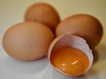 Mit Fipronil belastete Eier gelangen immer wieder in den Handel.