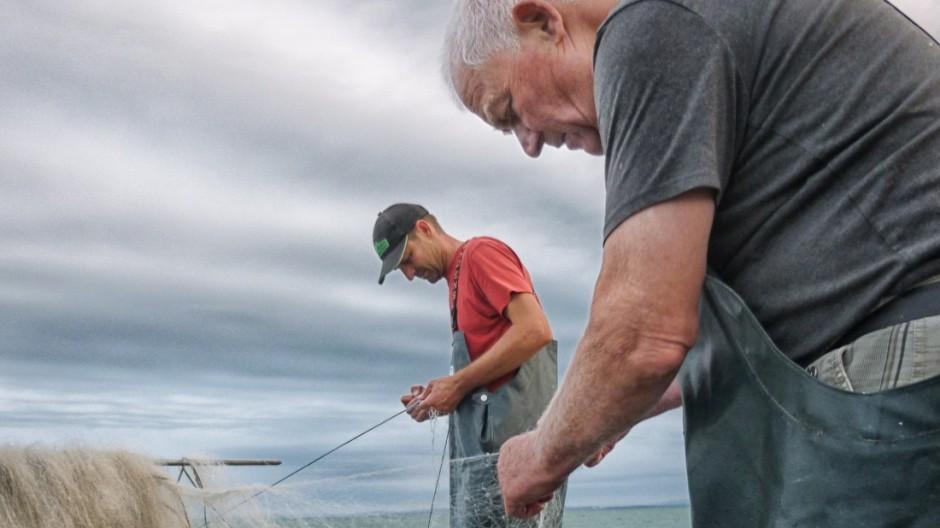 Bodensee Fischerei