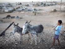Bedouins Of The Negev Desert