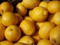 Zitronen, 2013