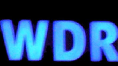 WDR: Aufseher mit Anteilen