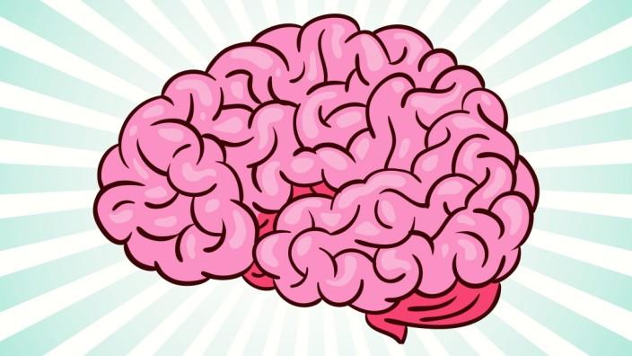 Gedächtnis Gehirn IQ-Test Intelligenz