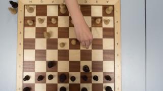 Schachzwerge
