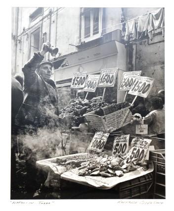 Starnberg Ausstellung nah-fern