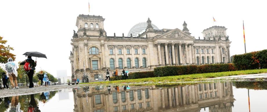 Wirtschafts- und Finanzpolitik AfD im Bundestag