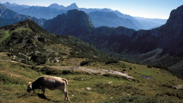 Reiseregion Österreich