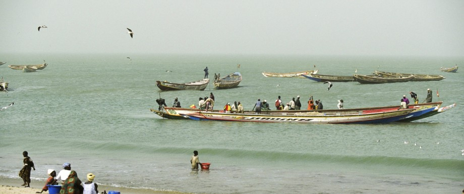 Traditional coastal fishing boats Tanji village Gambia PUBLICATIONxINxGERxSUIxAUTxONLY 1095720 Mik