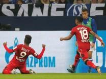 Bundesliga - Schalke 04 v Bayer Leverkusen