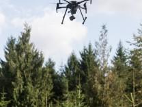 Drohnen im Wald