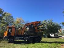 Baumpflanzung Neuried