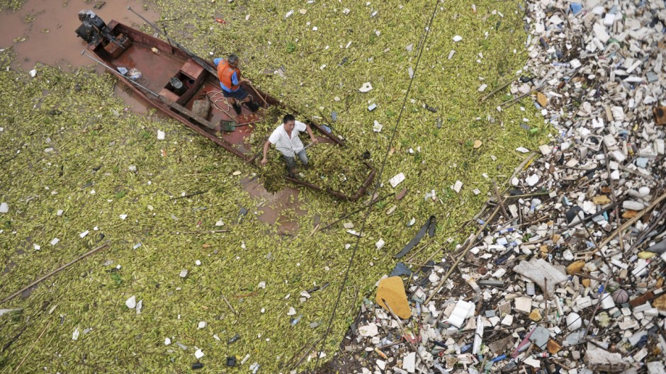 Workers clear floating plants and garbage off the surface of the Yangtze River at a section in Chongqing municipality