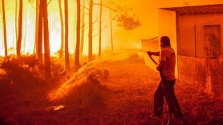 Forest fire in Vieira de Leiria, Condeixa, Portugal - 16 Oct 2017