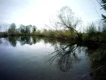 Alling: Künftiges Naturschutzgebiet Allinger Moos
