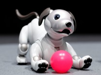 Sony Corp's entertainment robot 'aibo' is pictured at its demonstration in Tokyo