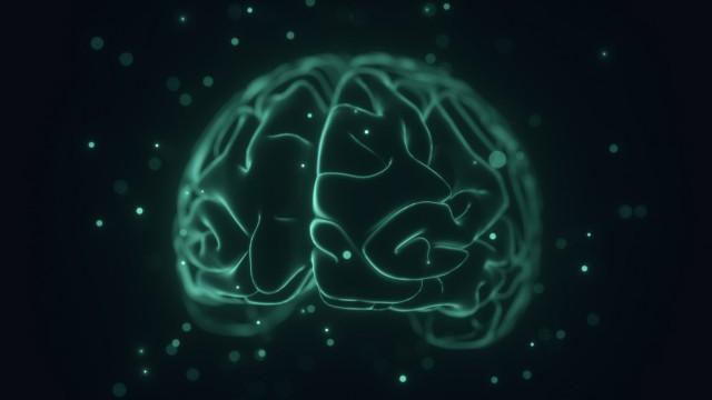 Human brain illustration Human brain illustration PUBLICATIONxINxGERxSUIxHUNxONLY KTSDESIGN SCIENCEx; imago80042643h