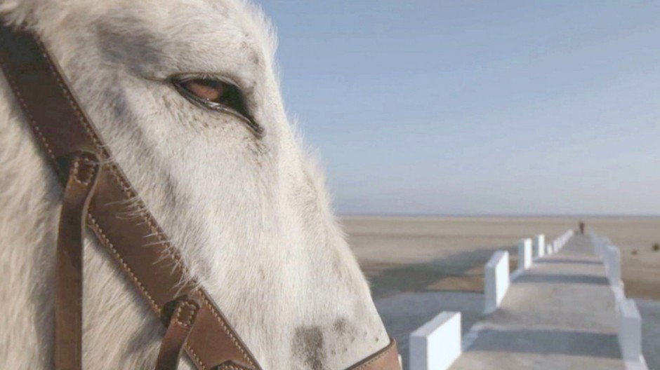 TV-Kritik 20 Jahre Dokumentarfilmreihe
