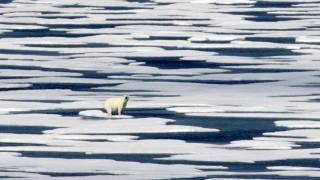 Umweltpolitik Umweltpolitik