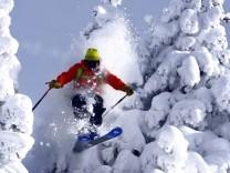 Tiefschneefahrer faehrt durch einen verschneiten Nadelbaum Frankreich Savoy freerider passing snow