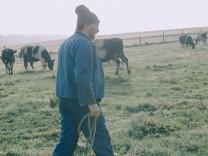 Kuh Milchkuh Zucht Tod der Schwarzbunten