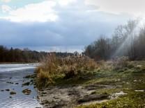 Baum-Führung an der Isar, Treffpunkt Thalkirchner Brücke, südseitig, Höhe Mitteldamm. Es geht um nötige Baumfällungen, Hochwasserschutz etc. Fachleute erklären an Ort und Stelle die nötigen Maßnahmen der nächsten Zeit.