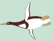Kumimanu biceae, an ancient penguin, is pictured in this handout artist's reconstruction