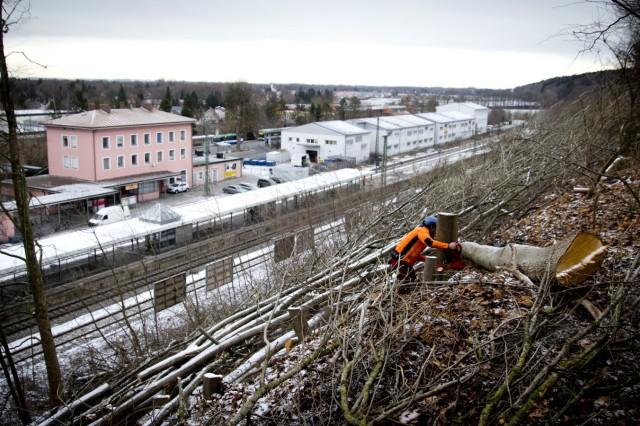 Bruck: Kahlschlag am S-Bahnhof