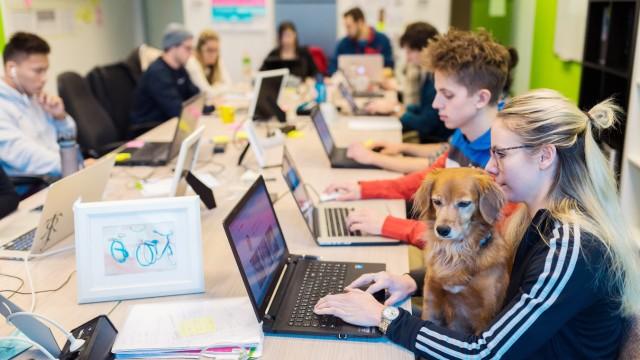 Mitarbeiterin sitzt mit Ihrem Hund auf dem Schoß im Büro Start up Unternehmen Radbonus in Köln