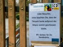 Tierpark Hellabrunn bleibt wegen Orkan geschlossen