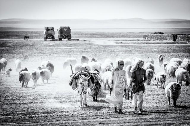 """Bildband Syrien - """"Ein Land ohne Krieg"""" Ein Buch von Lutz Jäkel und Lamya Kaddor"""