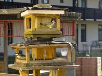 Vogelfutterstellen Marienheim Glonn