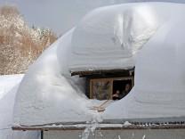 Die Spuren des harten Winters - Frühjahrs-Check am Haus