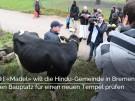 Hindu-Gemeinde inBremen prüft Bauplatz mit Hilfe von Kuh (Vorschaubild)
