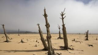 Verknappung des Trinkwassers in Kapstadt