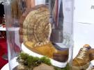 Fashion Week zeigt Schuhe aus Pilzen (Vorschaubild)