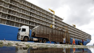 A truck lines up before cattle are loaded into the NADA vessel in the port of Santos
