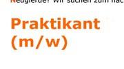 Praktikum Rechte DBB Scholz Schavan Petition
