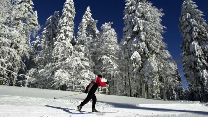 Skilangläufer im Bayerischen Wald