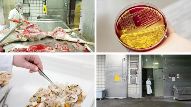 Bayerisches Landesamt für Gesundheit und Lebensmittelsicherheit in Oberschleißheim