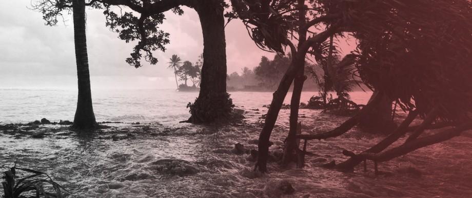 Klimawandel Meinung am Mittag: Klimawandel