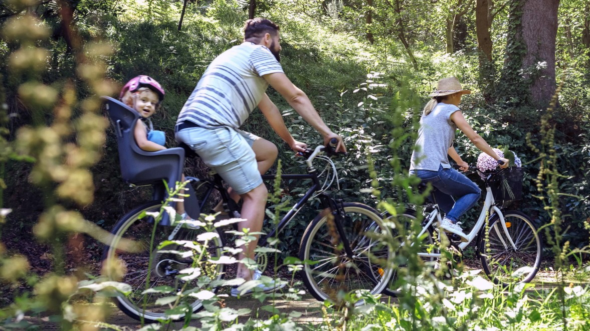 Stiftung Warentest Testet Fahrrad Kindersitze Auto Mobil
