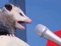 possum+jetzt