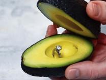 Avocadoantrag